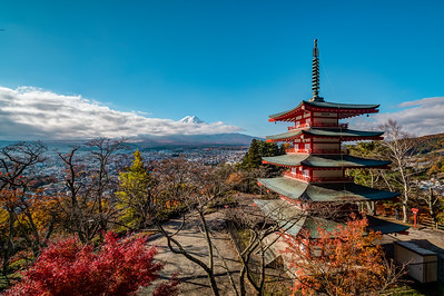 Mt. Fuji and Chureito Pagoda
