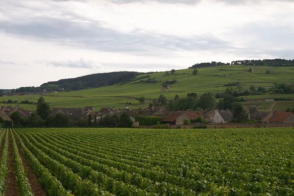 Bourgogne Biking Trip