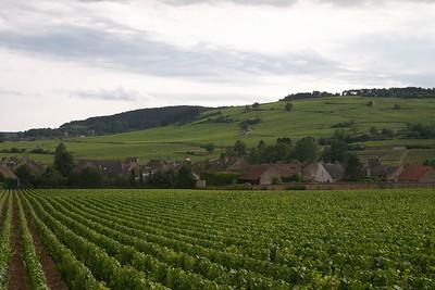 Beaune vinyards and hill