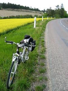 My bike, late day 2