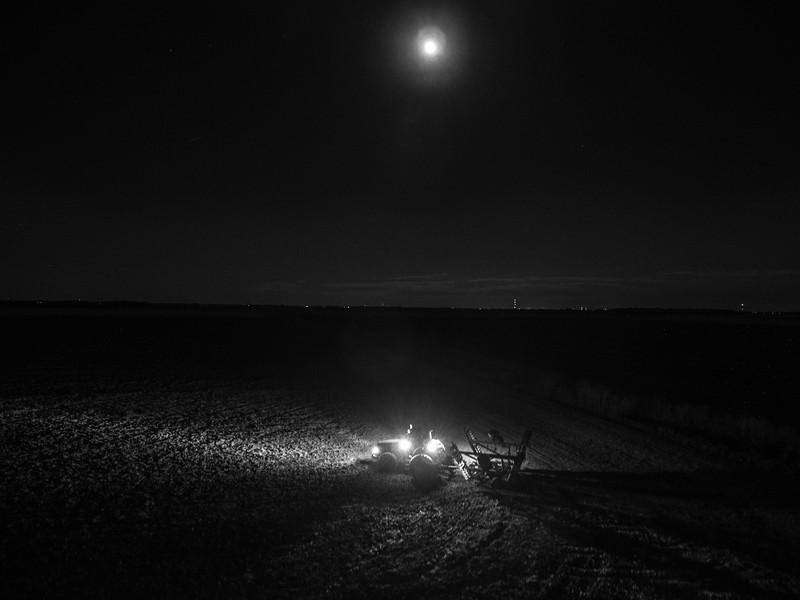 Night Lights on the Farm (BW)