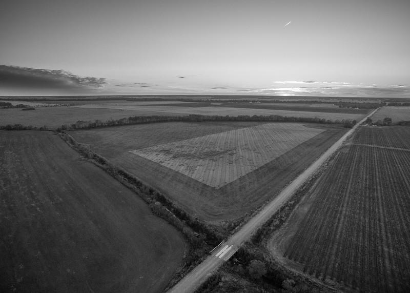 Empty Fields and Treelines (BW)