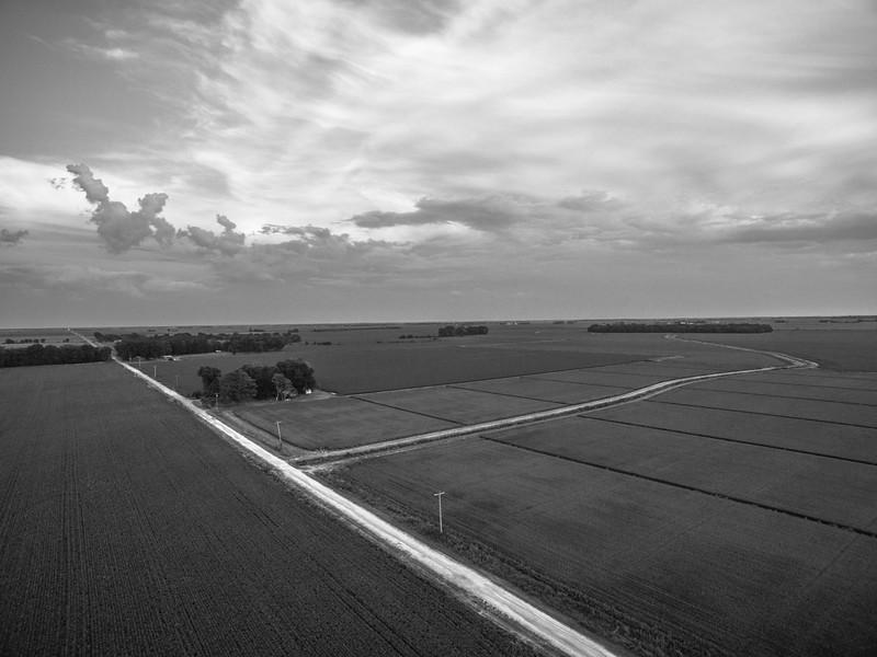 Mixed Crop Road (BW)