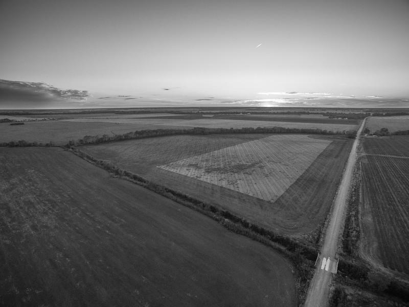 Empty Fields for Now (BW)