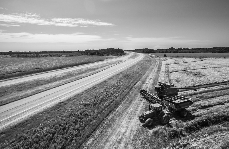 Rice Harvest on Highway 61 (BW)