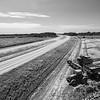 Rice Harvest on Highway 61 (BW)