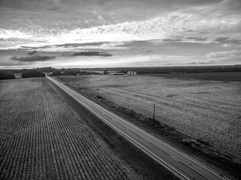 Highway Through the Cotton (BW)