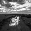 Cypress Highway (BW)