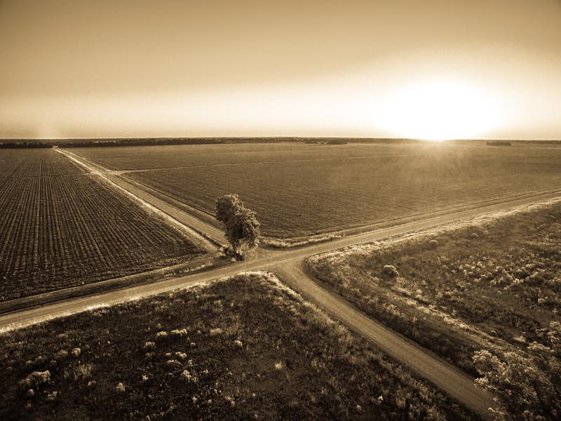 Bright Sun, Long Road (BW)