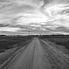 End of the Road (BW)