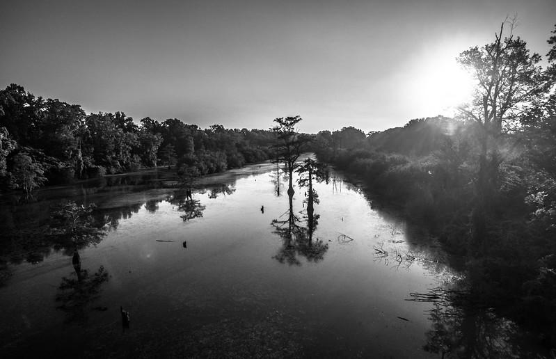 Swamp Sunrise on the Tallahatchie (BW)