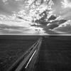 Road Goes on Forever (BW)