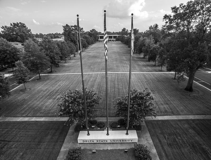 Flag Poles & Oak Trees (BW)