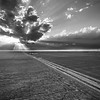 Long Road Home (BW)