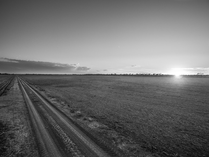 Turn-Road Sunset (BW)