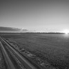 Turn-Road Sunset (BW)