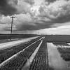 Dirt Road Rice (BW)