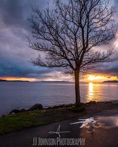 Puget Sound Sunset