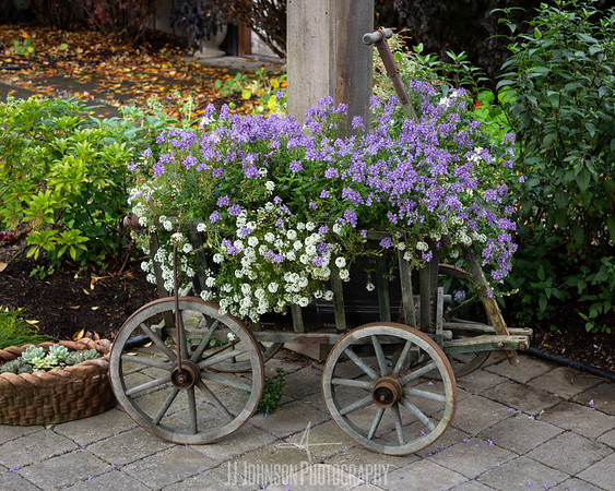 Cart Full of Blooms