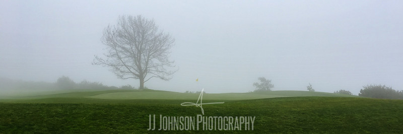 Foggy Fourth Green