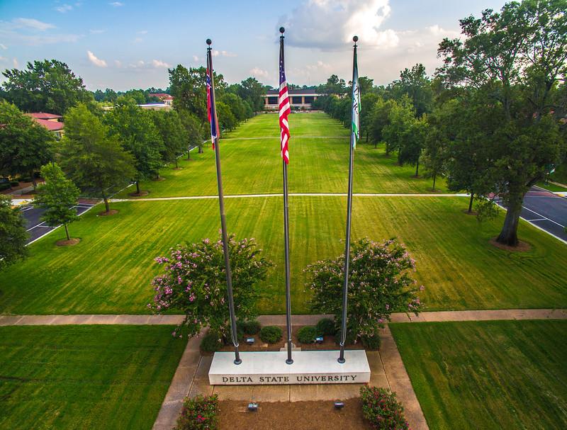 Flag Poles & Oak Trees
