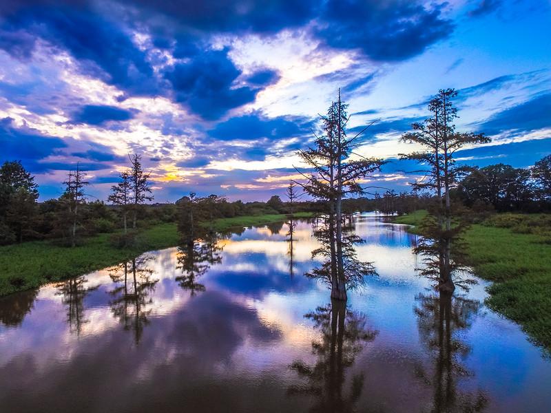 Cypress Break Sunset