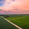 Mixed Crop Road