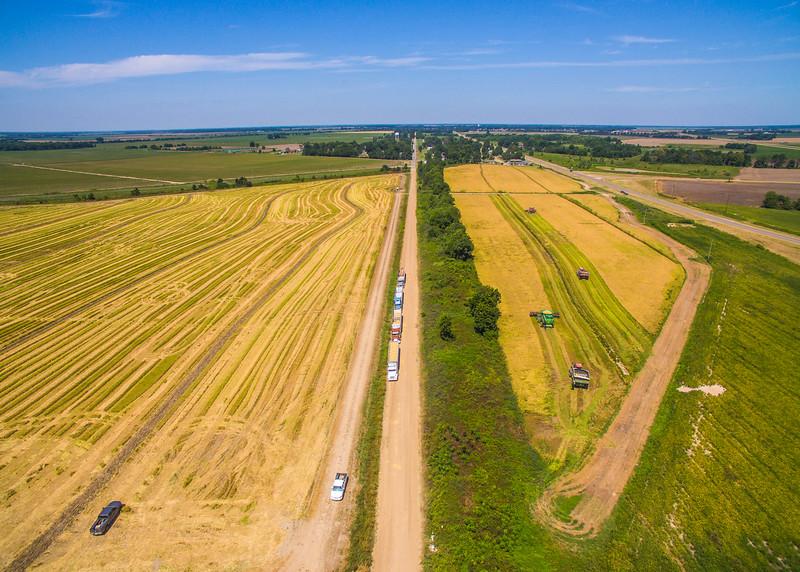 Rice Harvest Road
