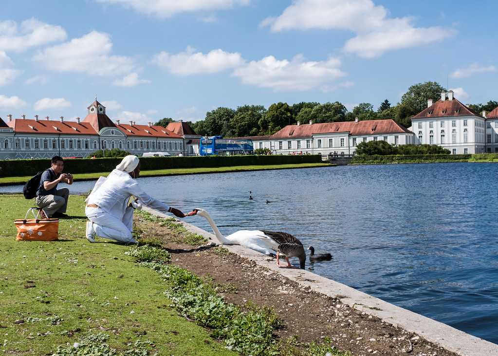 Feeding the swans at Schloss Nymphenburg
