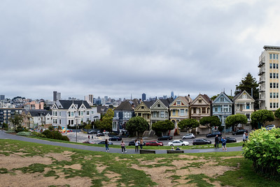 The painted ladies with the skyline looming in the mist