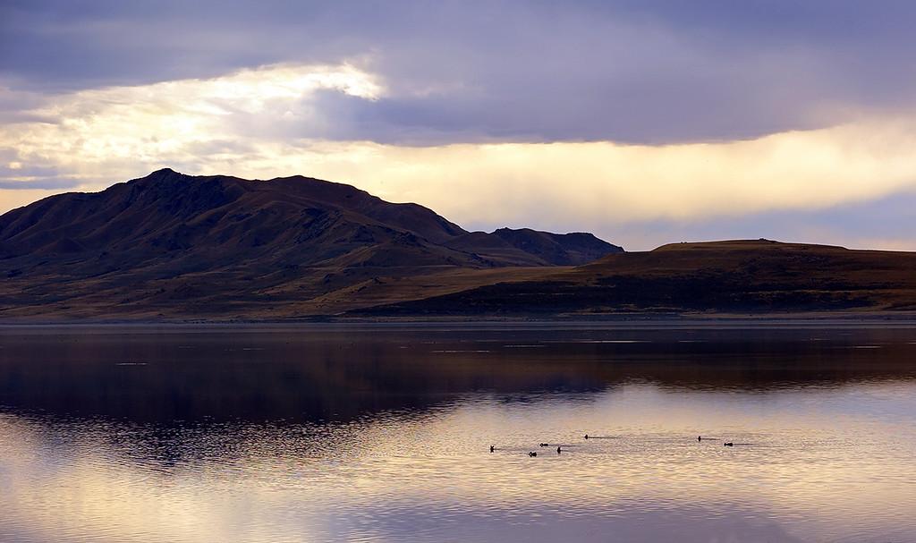 EAST SHORE OF ANTELOPE ISLAND - GREAT SALT LAKE