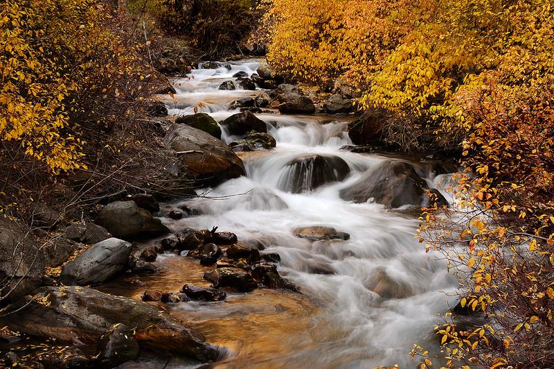 BIG COTTONWOOD CREEK - WASATCH MOUNTAINS - UTAH