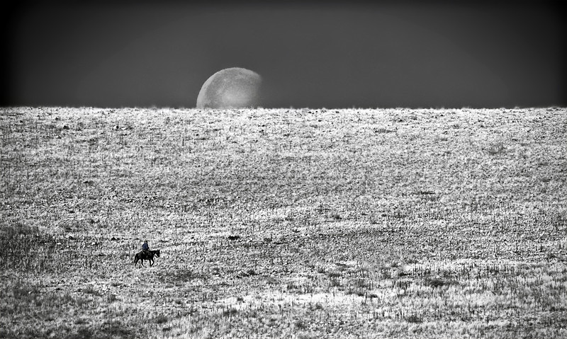 Moonset ride at 11a.m. - Antelope Island - Great Salt Lake - black & white with red filter