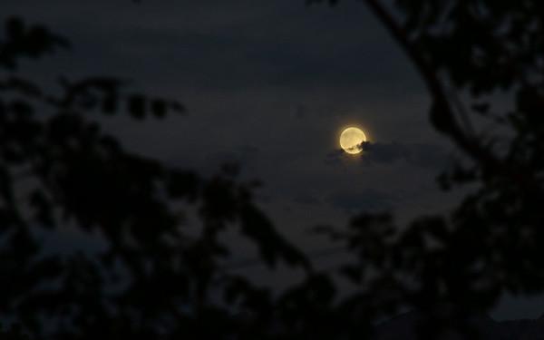 Full Moon July 2016