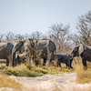 Botswana 2017 Vacation