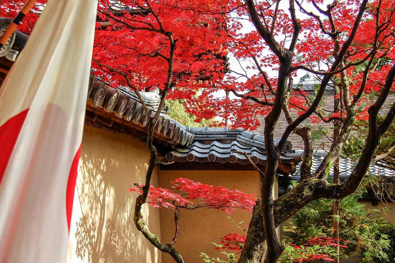 Autumn leaves and Hinomaru, Kyoto
