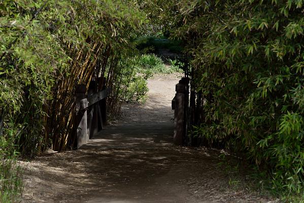 fullerton_ arboretum