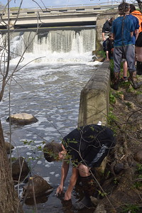 Photo by Chaelon Campbell , Fulton Schools  Students release fish from the Salmon in the Classroom program, while collecting data.