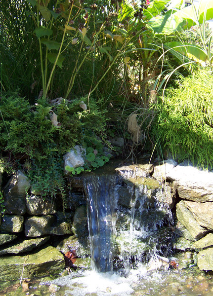 Baron Von Pefa found a small waterfall in which to freshen up after his travels, and felt hungry after his bath.