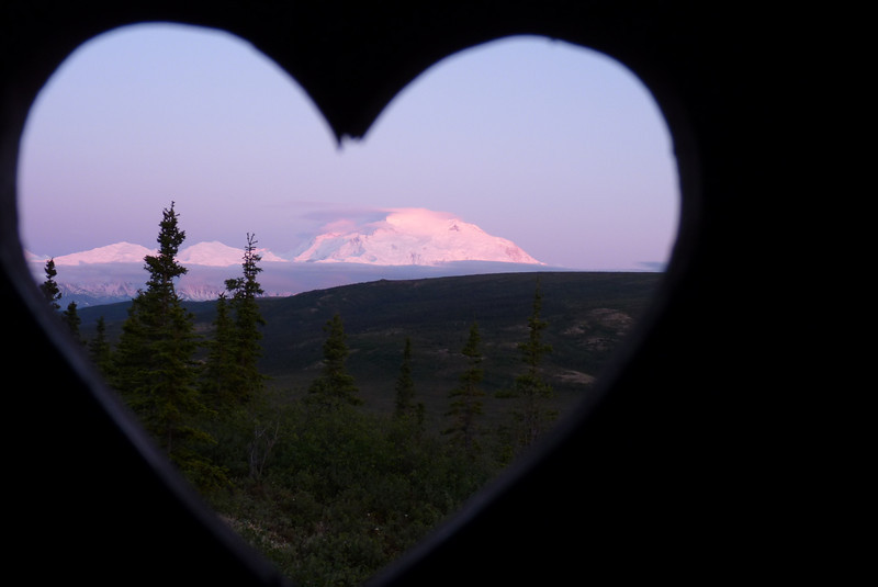Alpenglow on the Mountain from our Camp Denali latrine window.  Denali National Park, Alaska, June 2012