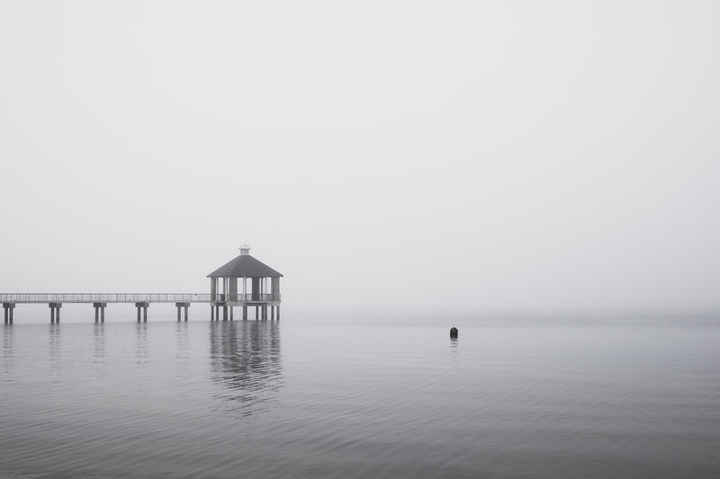 Foggy Morning at Fontainebleau State Park