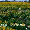 20170918_192000 - 0001 - Maria's Field of Hope - Prayers from Maria