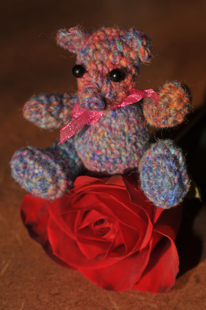 Noro sock leftovers bear with one of my annivesary roses