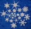 Moss Snowflake Variations