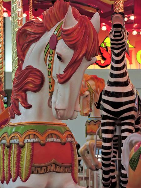 bow to the zebra