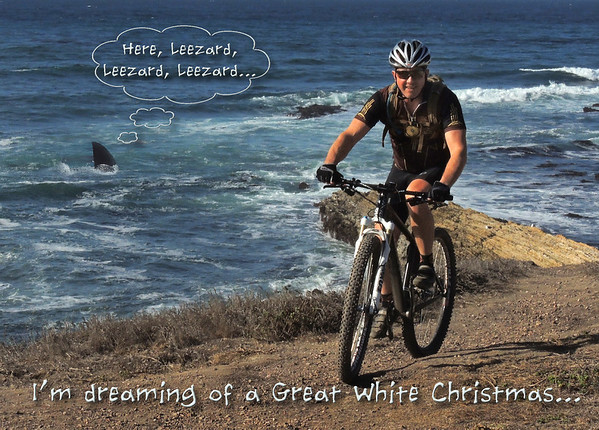 Dreaming of a Great White Christmas