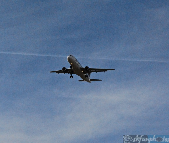 Flight! (21).jpg