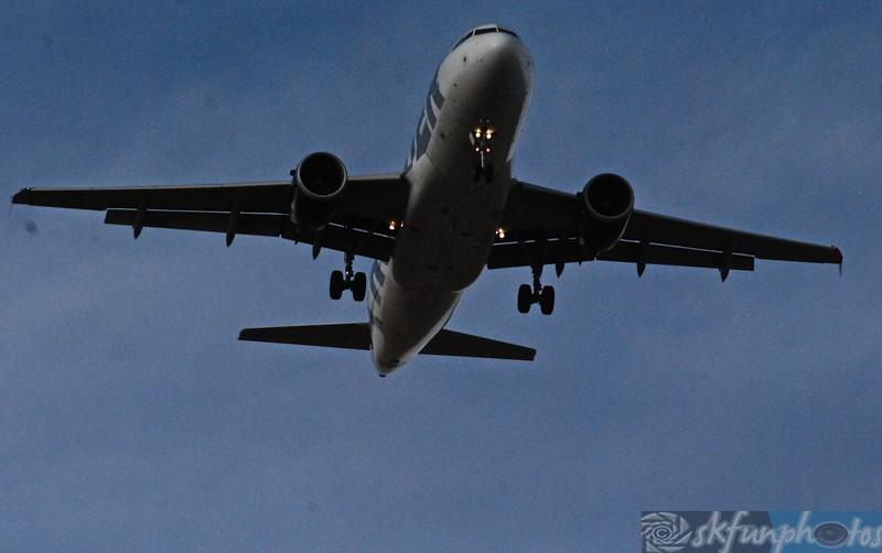 Flight! (23).jpg