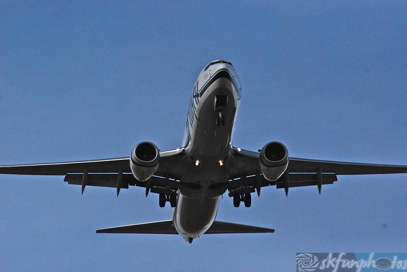 Flight! (29).jpg