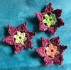 January 111th Snowflake flower